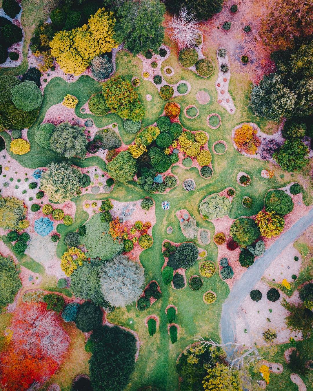 Colorful photograph of a botanical garden in Adelaide, South Australia taken with a DJi Maverick Drone